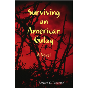 About Surviving an American Gulag by Edward Patterson - Freado