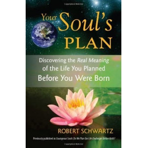 Your Soul's Plan: Discovering the Real Meaning of the Life You Planned Before You Were Born by Robert Schwartz