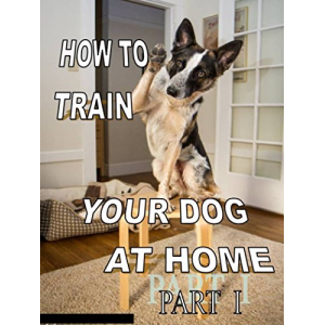HOW TO TRAIN YOUR DOG AT HOME (HOW TO TRAIN YOUR DOG AT HOME. PART 1)