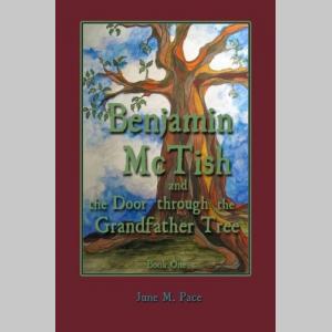 Benjamin McTish and the Door through the Grandfather Tree (The Benjamin McTish Series) (Volume 1)