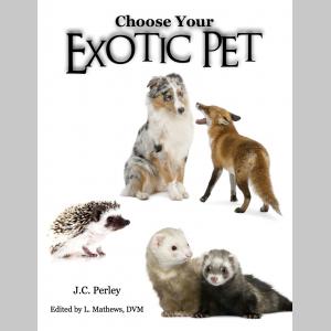 Choose Your Exotic Pet: Mammals