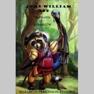John William and the Bandits of Basswood (John William's Adventure Series)