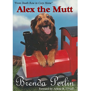 Alex the Mutt: From Death Row to Cozy Home