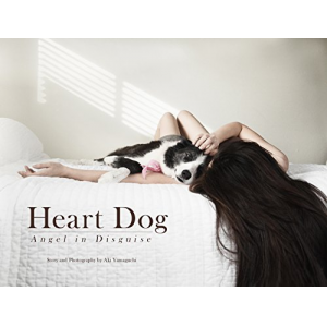 Heart Dog—Angel in Disguise