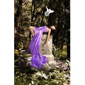 eBook - The Blood of Venus - Book 2: The Last Avatar of Venus