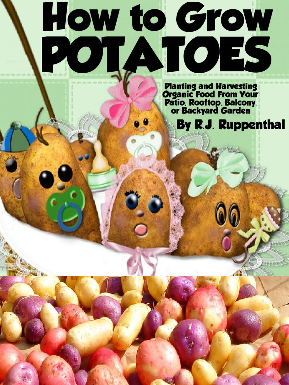 How to Grow Potatoes: Planting and Harvesting Organic Food From Your Patio, Rooftop, Balcony, or Backyard Garden (26-page Booklet)