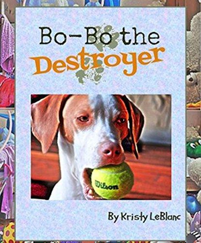Bo-Bo the Destroyer (The Mr. Bo-Bo Picture Book Series 2)