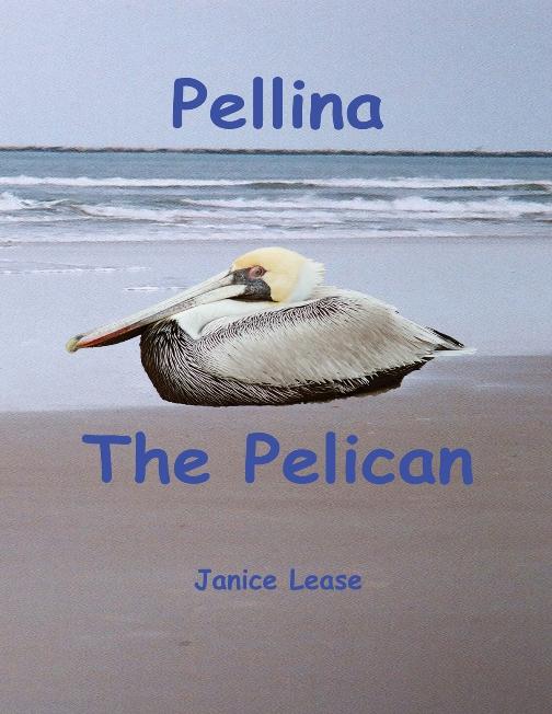 Pellina The Pelican