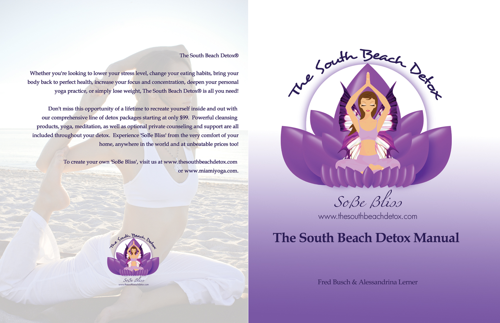 The South Beach Detox