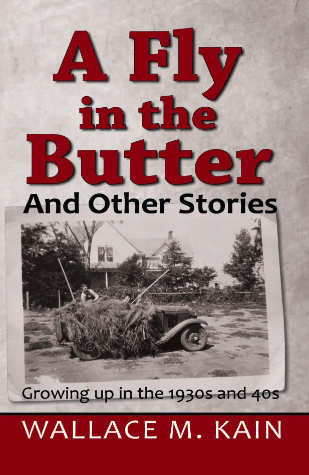A Fly in the Butter & Other Stories