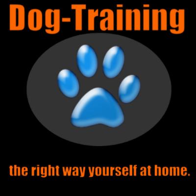 Dog Canine Training