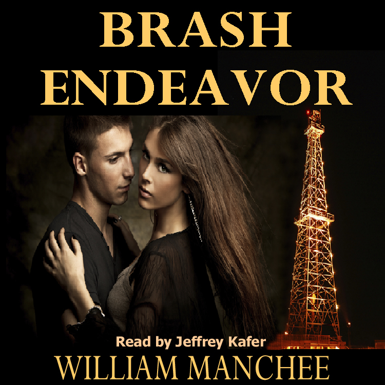 Brash Endeavor, A Stan Turner Mystery