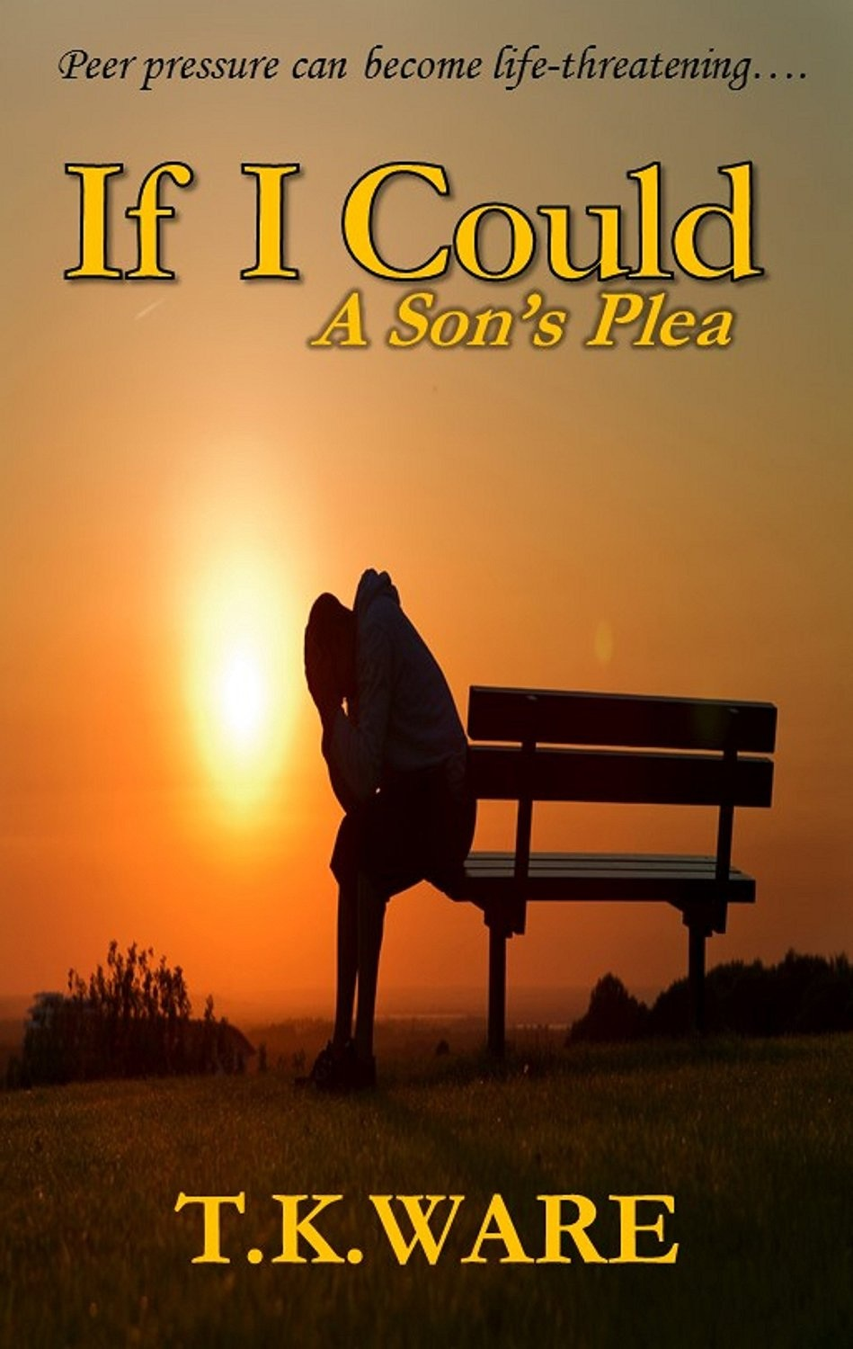 If I Could: A Son's Plea