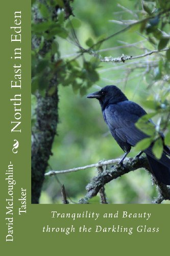 North East in Eden: Tranquility and Beauty through the Darkling Glass