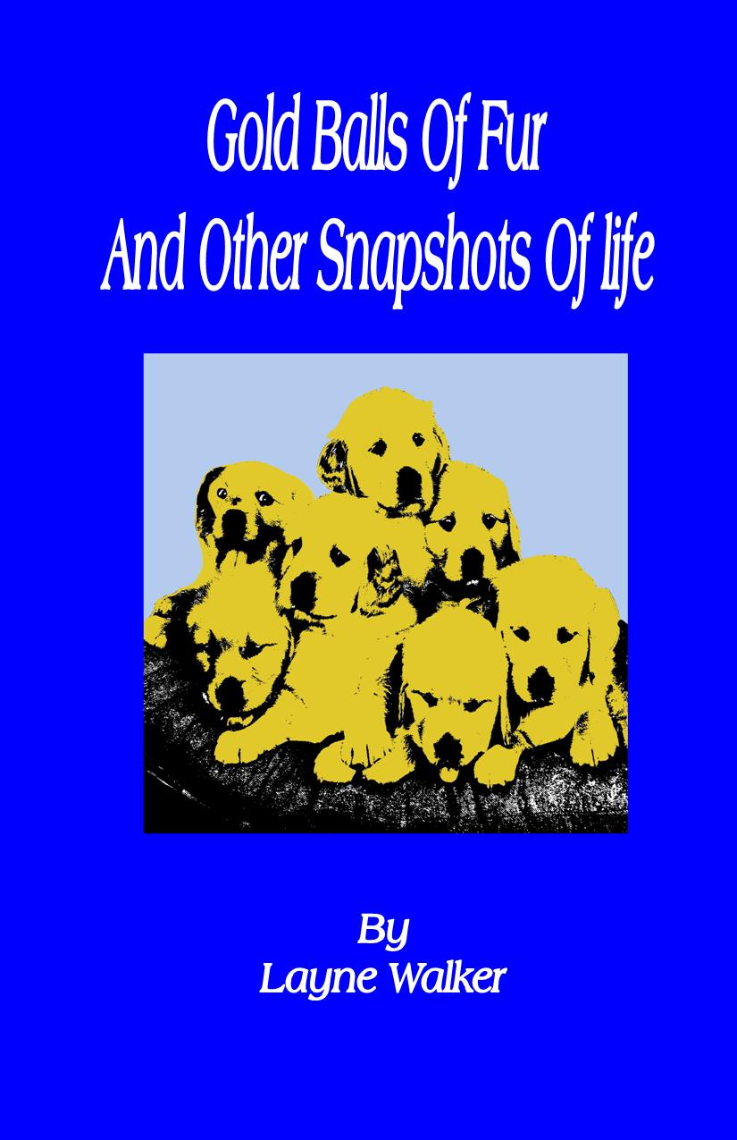 Gold Balls Of Fur And Other Snapshots Of Life